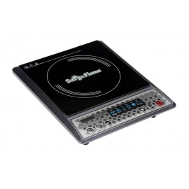 INDUCTION COOKER W-11